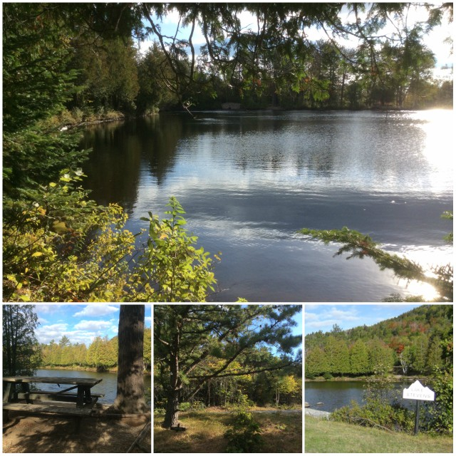 The hiking path around Lake Stevens has many places to enjoy a picnic lunch or stroll while holding hands.