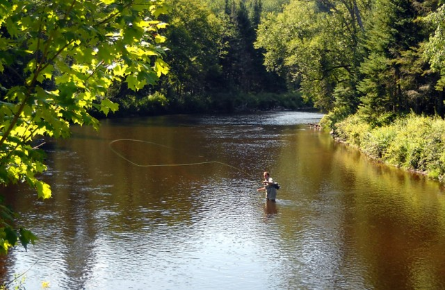 Fishing the Ausable