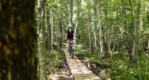A woman rides a mountain bike in the woods