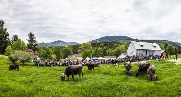 Suagr House Creamery, in the foothills of the Adirondack High Peaks