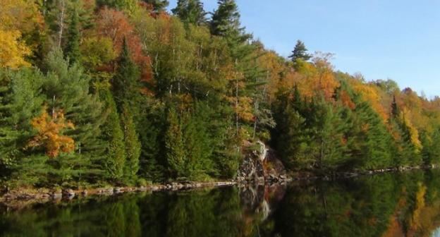 Hot fall color begins between the cool blues of sky and river.