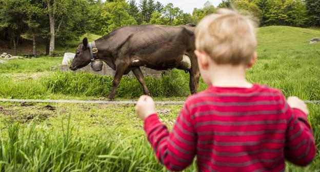 These kids at Asgaard Farm are brand new and still getting the hang of things.