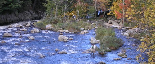 Fall Flyfishing