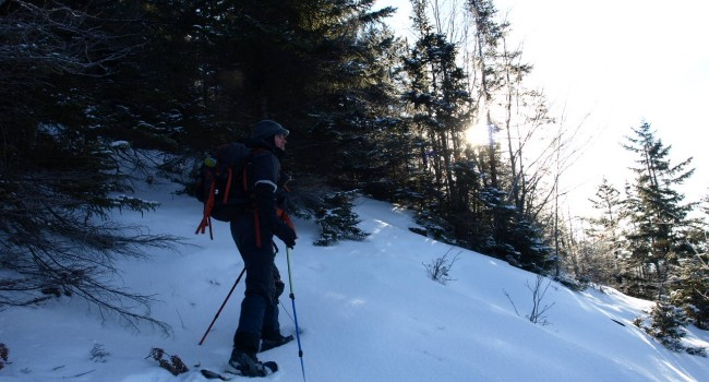 Whip yourself into Snowshoeing Shape, five trails to help you reach your goals