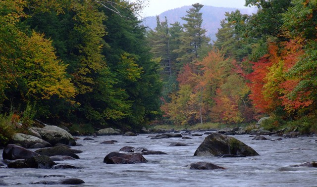 Ausable River in the Fall