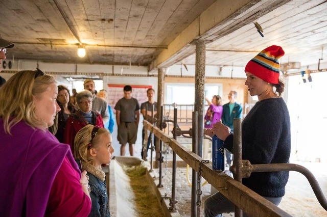 The farm tour is a popular highlight of Sugar House Creamery. (photo Lisa J. Godfrey)