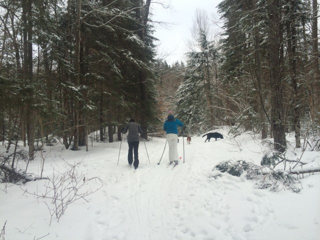 Cross-country skiing Whiteface Landing