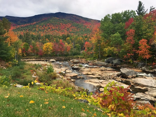 The peak of fall color goes all the way up the mountain.