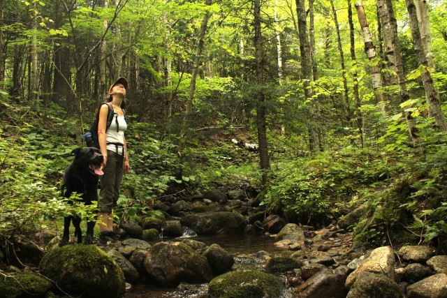 Anna pauses to admire the scenery before crossing one of several streams along the trail.