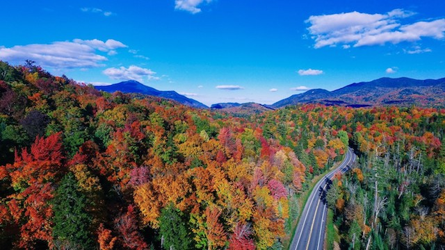 We have some of the best fall foliage in the world. It's simply a fact.