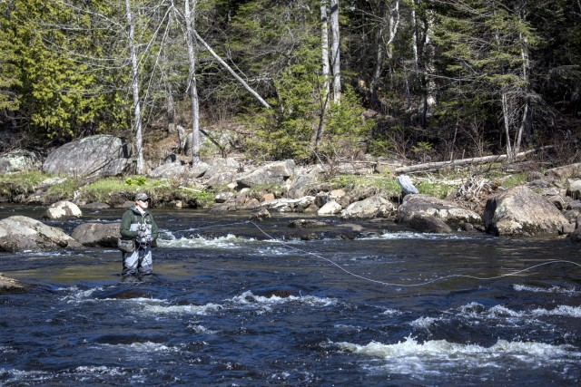 Adirondack fishing whiteface region for York river fishing report