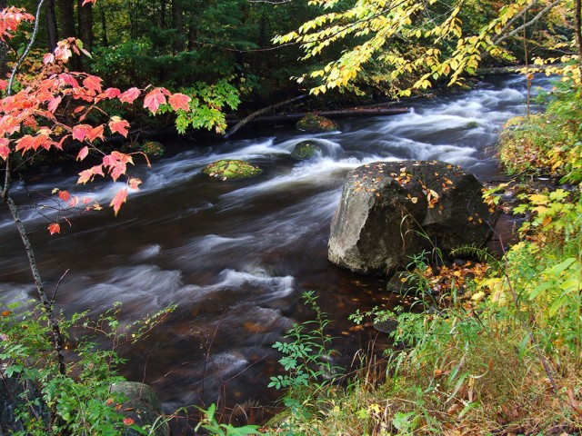 fall adirondack stream for fly fishing