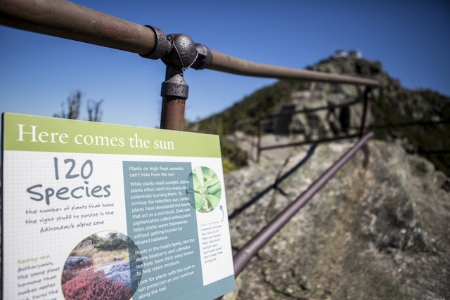 The walk along the peak includes informational signboards about the ecology around the mountain.